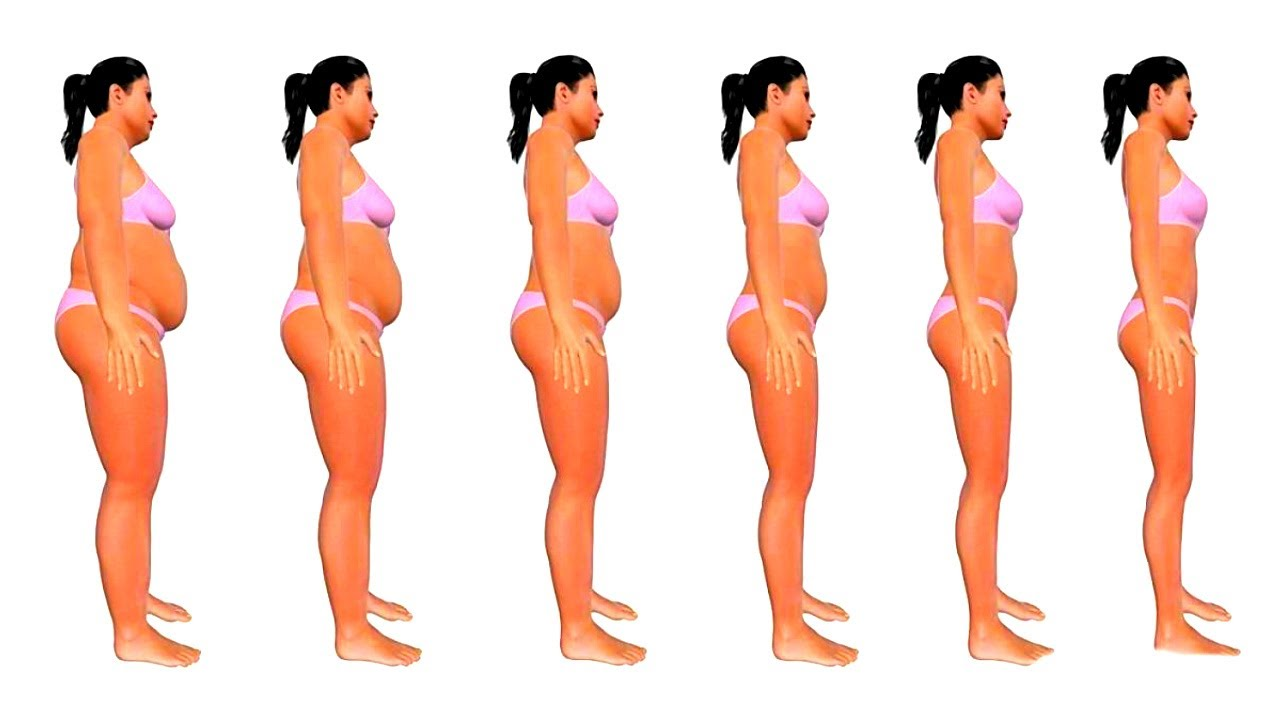 6 Secrets To Lose Weight Successfully - Stay Healthy Facts